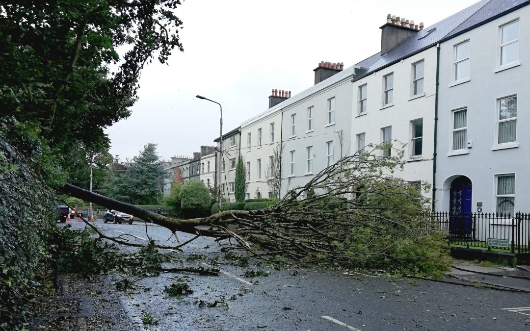Storm Damage – Call us straight away!